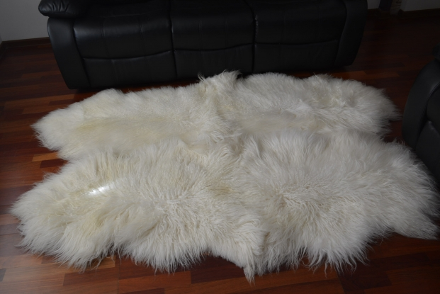 Icelandic white curly quad 4 sheepskin rug long wool